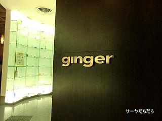 20101205 ginger 1