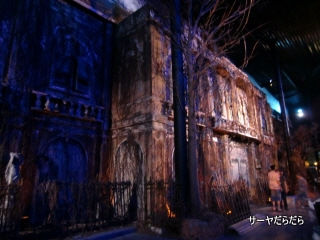 20110113 mansion 7 10