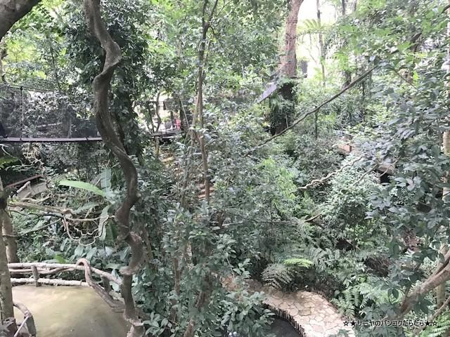 Mae Fah Luang Garden シーナカリン チェンライ (28)