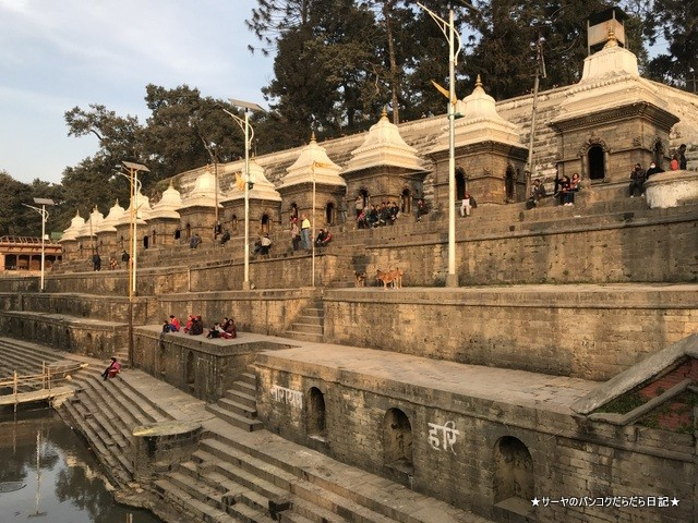 パシュパティナート Pashupatinath 世界遺産 (34)