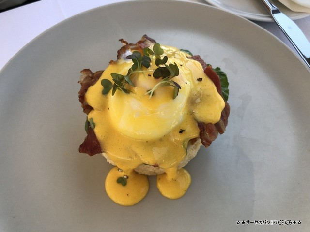 Above 5 Rooftop クロアチア ドゥブロブニク Dubrovnik egg