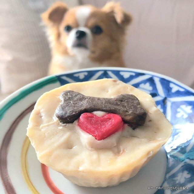 Dogkery ペットフード バンコク 犬 猫 (6)