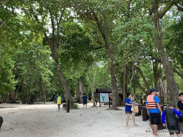 プーケット シミラン諸島ツアー タイ国内旅行 (12)