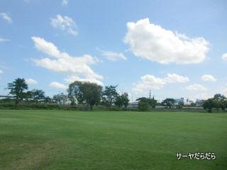 20120714 unico 4