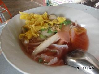 20110705 plean wan 3