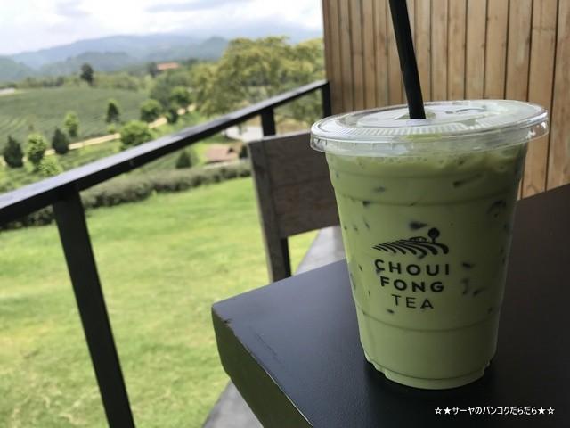 Choui Fong Tea Plantation 茶畑 チェンライ (11)