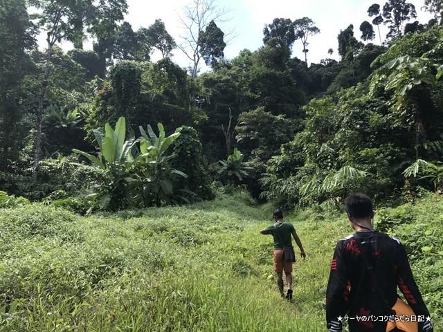 バギー ジャングルツアー カオラック (4)