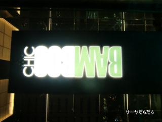 20100821 bamboo 1