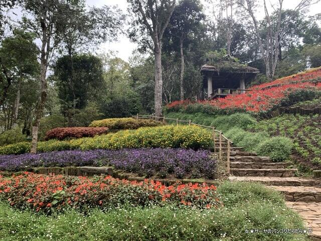 メーファールアン植物園 Mae-Fah-Luang-Arboretum (10)