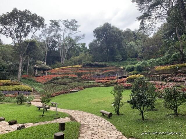 メーファールアン植物園 Mae-Fah-Luang-Arboretum (13)