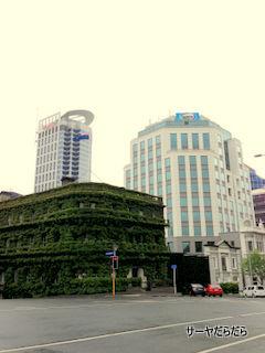 Auckland city 5