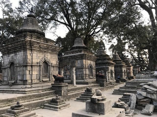 パシュパティナート Pashupatinath 世界遺産 (26)