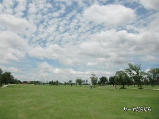 20120714 unico 3
