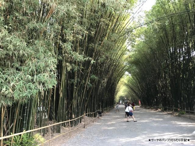 Chulabhorn Wanaram temple ナコンナヨック 嵐山 (2)