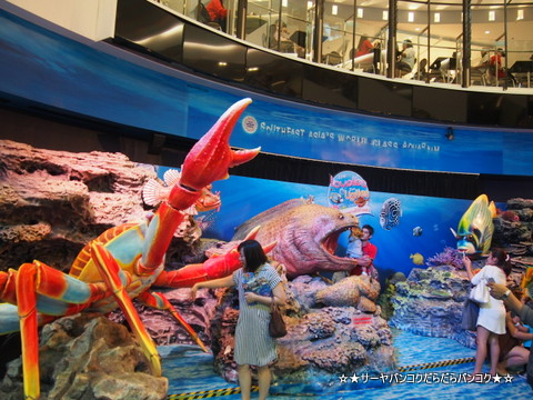 サイアムオーシャンワールド サーヤ Siam Ocean World