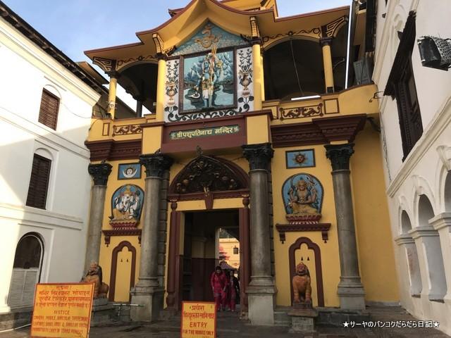パシュパティナート Pashupatinath 世界遺産 (9)