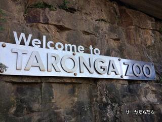TARONGA ZOO 1