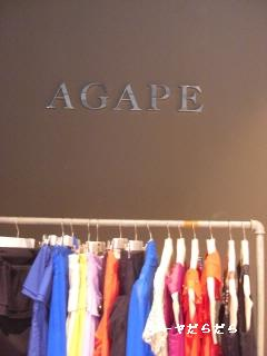 20100213 agape 1