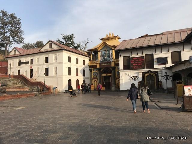 パシュパティナート Pashupatinath 世界遺産 (7)