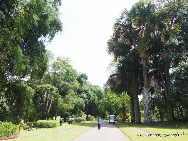 Royal Botanic Gardens ロイヤル・ボタニック・ガーデンズ