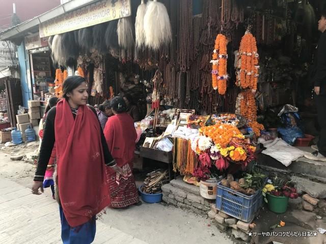 パシュパティナート Pashupatinath 世界遺産 (2)