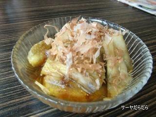 20110313 michinoku 2