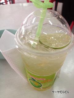 20120223 lemonade 2