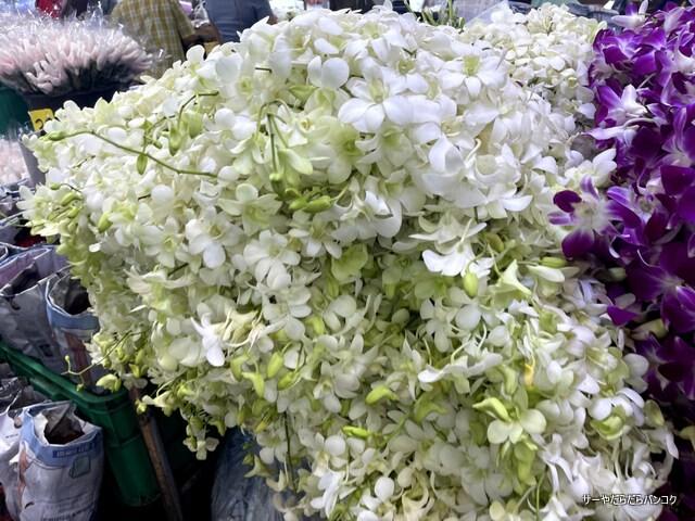 パークロン市場 ヨードピーマン バンコク 花市場 (1)