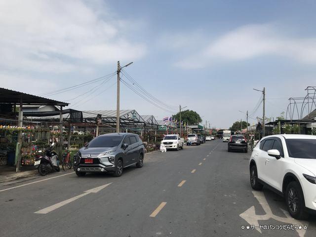 園芸市場 ナコンナヨック Klong 15 Tree Market Rangsit (6)