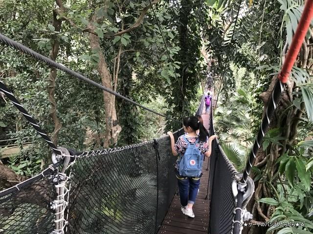 Mae Fah Luang Garden シーナカリン チェンライ (26)