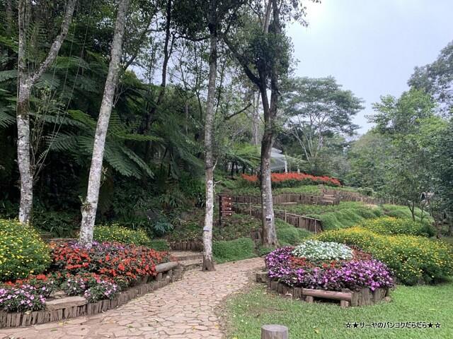 メーファールアン植物園 Mae-Fah-Luang-Arboretum (11)