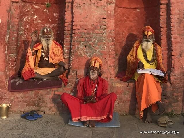 パシュパティナート Pashupatinath 世界遺産 (24)