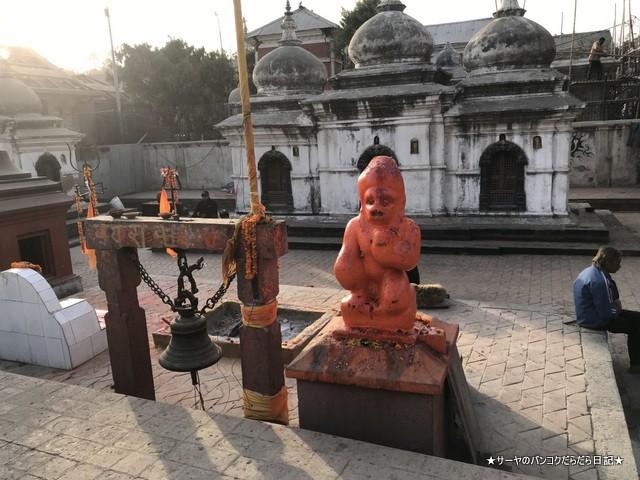 パシュパティナート Pashupatinath 世界遺産 (19)