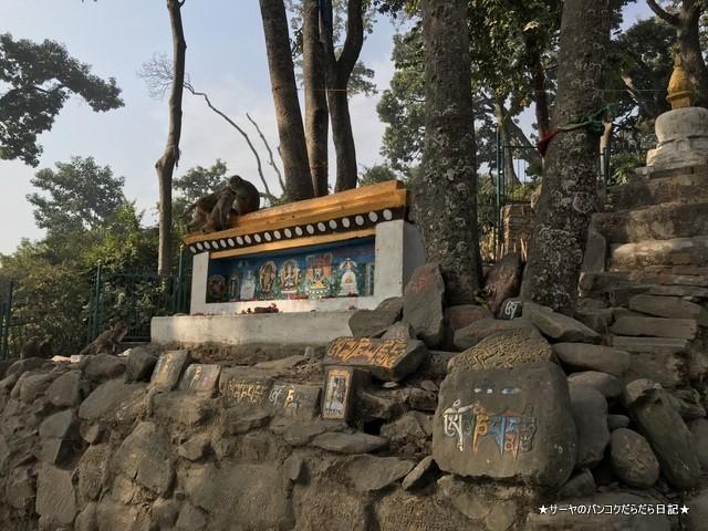 カスワヤンブナート仏塔 カトマンズ 世界遺産 (4)
