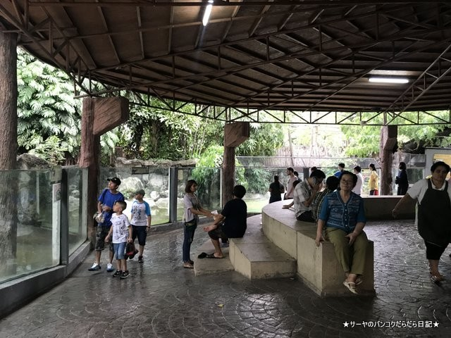 Dusit Zoo ドゥシット動物園 タイ カバ 最古 (32)