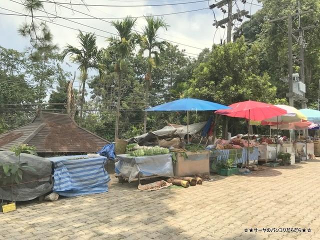 Mae Fah Luang Garden シーナカリン チェンライ (1)