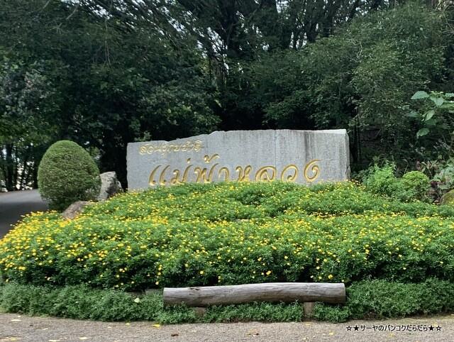 メーファールアン植物園 Mae-Fah-Luang-Arboretum (2)