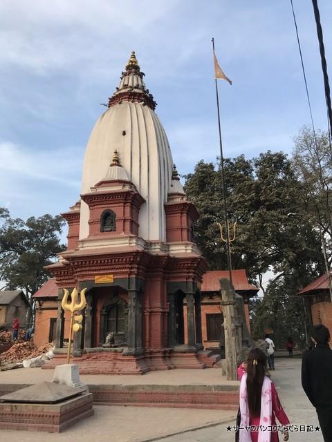 パシュパティナート Pashupatinath 世界遺産 (27)