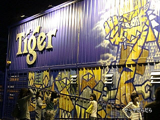 20101220 Tiger 1