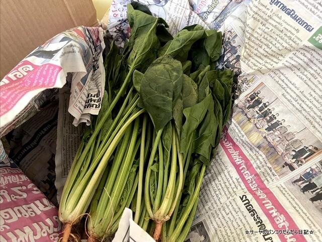 旬の野菜詰め合わせ チェンマイ 野菜 (5)