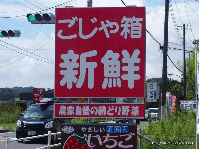 ごじゃ箱 岬 千葉県 MISAKI ISUMI CHIBA