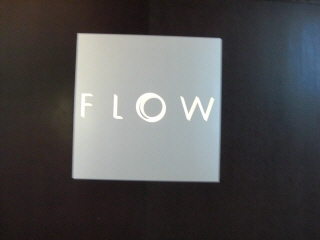 20080127 flow 1