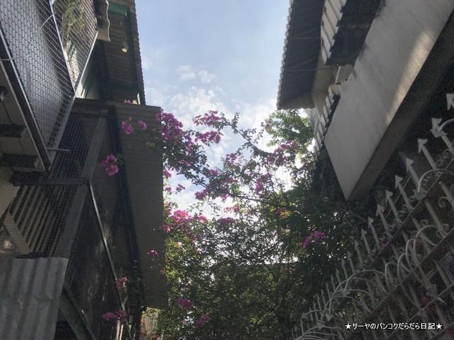オールドシティ 風景 バンコク サヤ散歩 (6)