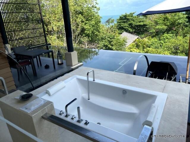 Vana Belle Ocean View Pool Suite,1 King, Sofa (4)