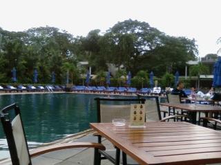 20081126 pool terrace 3