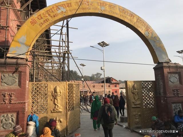 パシュパティナート Pashupatinath 世界遺産 (3)