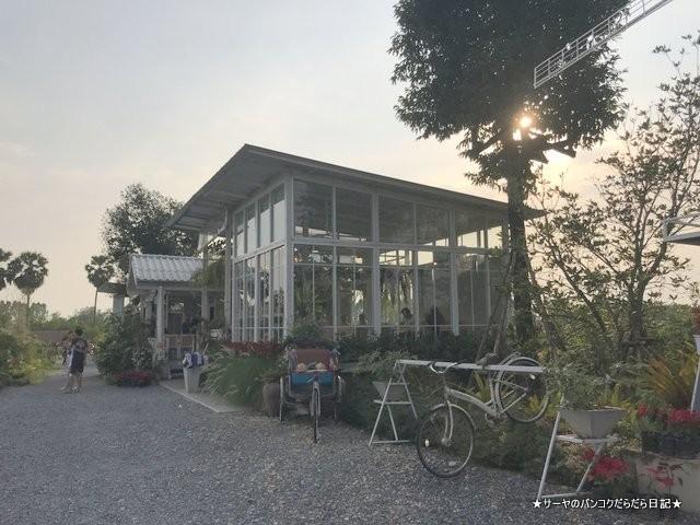 Fourbuta Cafe ナコンナヨック 畑 カフェ 眺め (3)