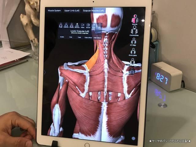 painaway bangkok 整体 かっぴんぐ ハリ治療 (4)