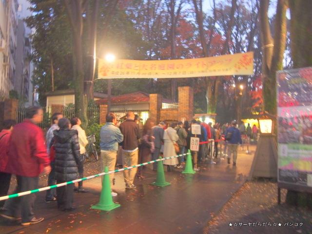 六義園 駒込 ライトアップ 東京 紅葉