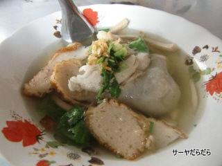 20110705 plean wan 4